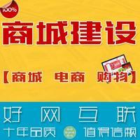 商城建设 商城网站  购物网站 电商网站 开发定制 好网互联