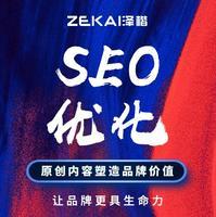 网站 SEO 优化搜索排名权重百度关键词竞价投放媒介DSP投放