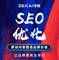 网站 SEO 优化搜索排名权重百度关键词竞价投放媒介投放DSP