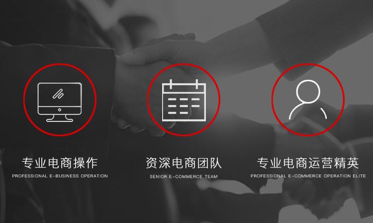 淘宝天猫京东代运营网店托管代运营直通车流量优化推广整店运营