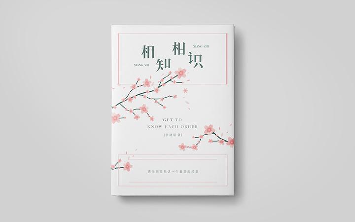 书籍设计封面装帧杂志报纸期季刊企业菜谱绘本网络小说教材封面排