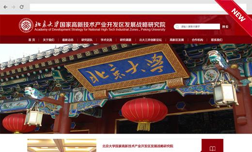 北京大学网站建设网站设计网站开发