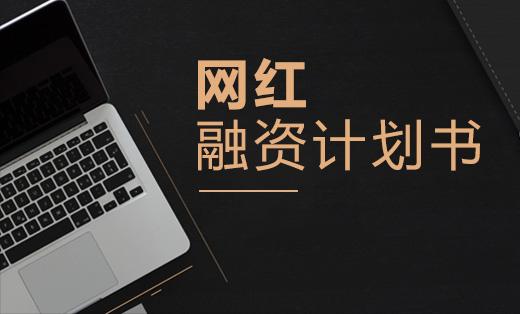 网红-商业计划书