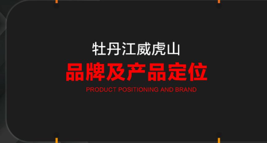 【艺点品牌营销策划】 品牌广告语策划宣传推广文案策划活动策划