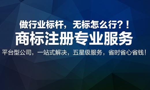 瀛知产知识产权平台