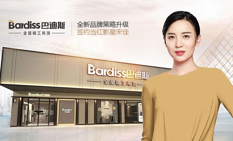 巴迪斯吊顶 品牌全案设计电商设计营销策划网站设计