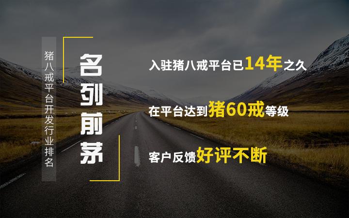 公司企业网站建设官网网站制作网站开发网站设计商城网站晟轩科技