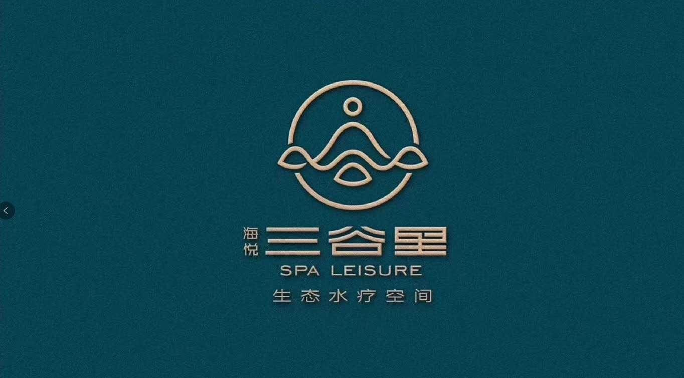 公司logo品牌logo设计图文原创标志商标设计LOGO图标