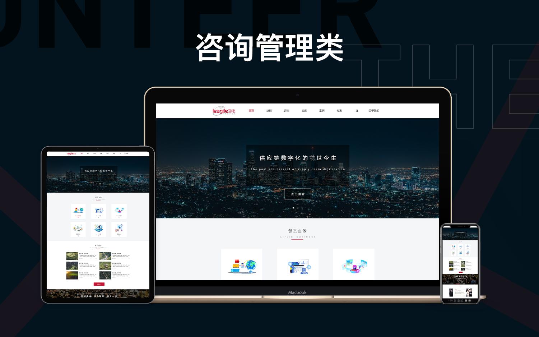 电商模板建站分销商城seo推广页引流管理外贸独立站H5公众号