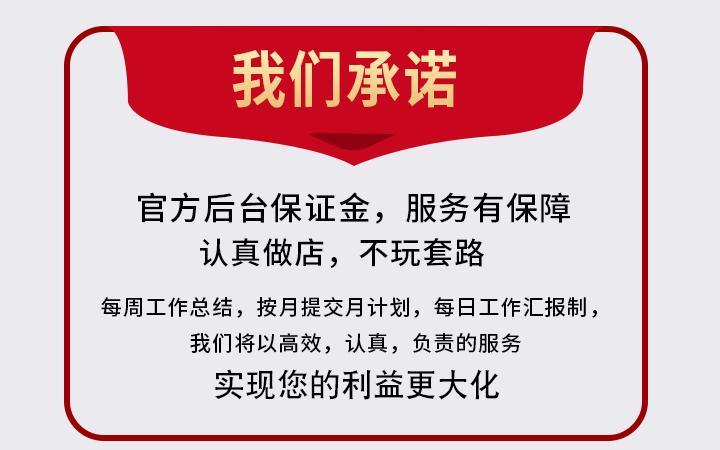 淘宝天猫整店代运营托管阿里巴巴京东运营直通车优化店铺营销推广