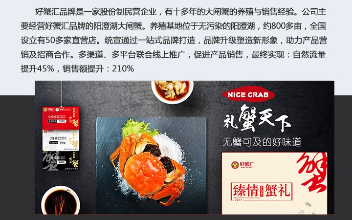 整合营销全案品牌营销策划套餐服务公司传播宣传线上全网营销推广