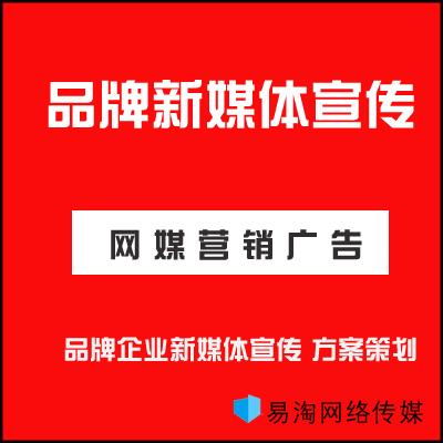 企业线上品牌曝光媒介投放网络营销推广网红营销宣传方案定制