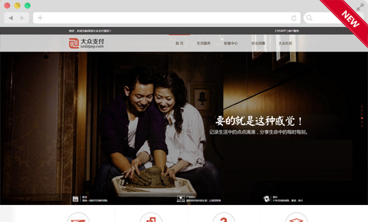 【H5网站】大众支付官网