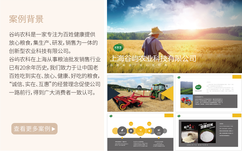 公司品牌企业产品营销策划软文全案传播文案网络营销方案