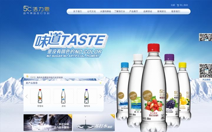 浦元高端集团网站建设 网站开发 网站制作 企业网站定制开发