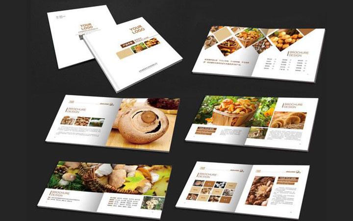 折页三折页对折页单页dm产品手册/品牌画册展板易拉宝企业画册