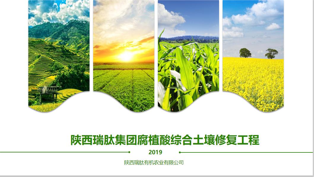 商业计划书PPT文案策划可行性研究分析报告融资计划书BP