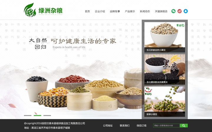 模板网站企业公司网站仿制开发搭建建站维护制作食品饮料久久网络