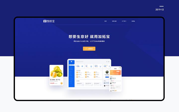 网站开发/电商网站/电商网站/UI设计/定制开发/web开发