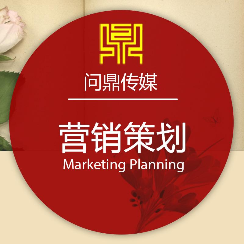 【营销策划】营销策略/招商加盟/活动策划/营销策划/商务策划