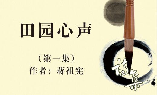 蒋老师 诗集画册设计排版