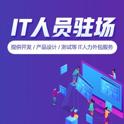 严选-IT人员驻场