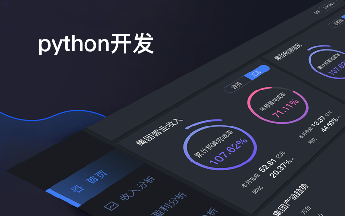 python/java/php后端安卓苹果前端/系统软件开发