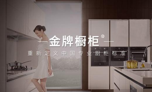 【品牌整合营销】金牌厨柜—重新定义中国专业厨柜标准