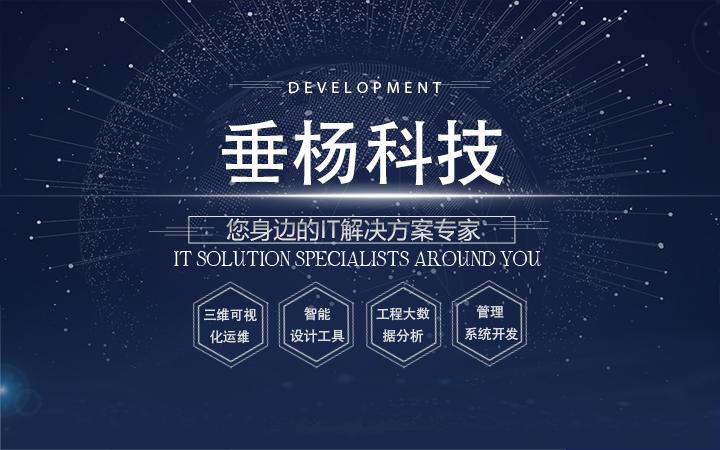 【垂杨信息科技】管理类软件开发/工程监控管理软件开发费用