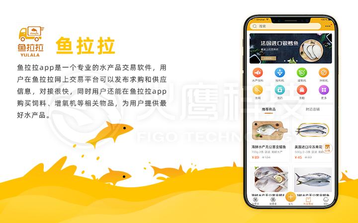 APP开发汽车资讯 汽车后市场租车 二手车 驾考app开发