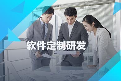 软件制定开发 网站开发 微信小程序开发