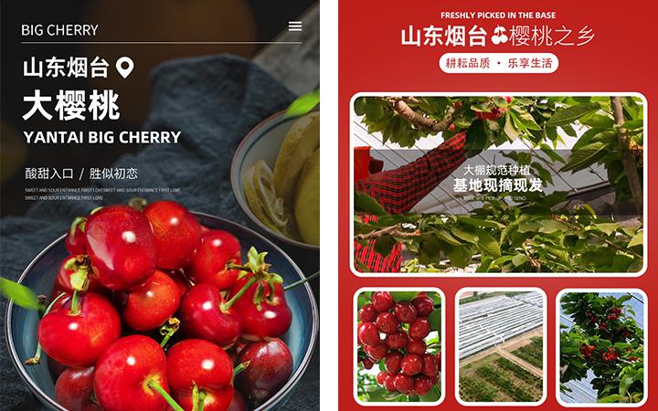 首页设计淘宝天猫京东店铺首页设计详情页设计主图设计电商设计