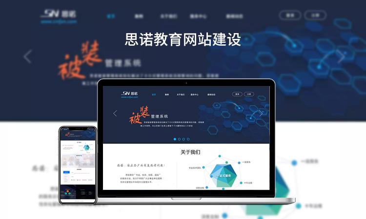 商城网站/门户网站/手机网站/公司网站开发高级定制版