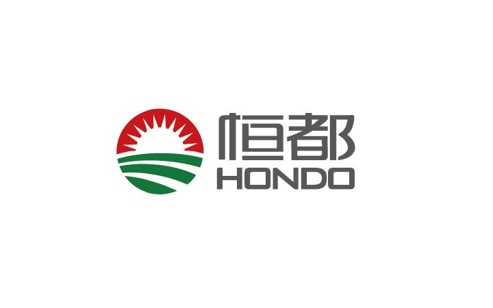 上海苏州深圳高端标志公司餐饮医疗品牌科技产品LOGO原创设计