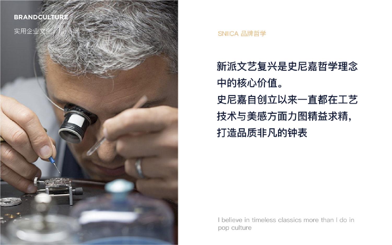 实用企业文化设计定制策划品牌故事广告语宣言简介理念设计策划