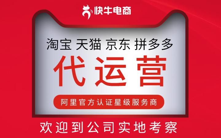 电商品牌传播策略网络服务礼品袋塑料袋电脑软件软件包裹袋编织袋
