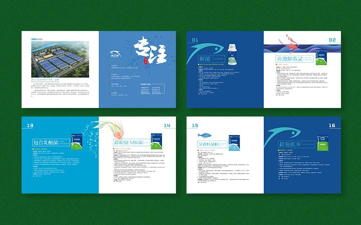 画册设计原创旅游金融保险教育企业宣传册招商活动产品说明书高端