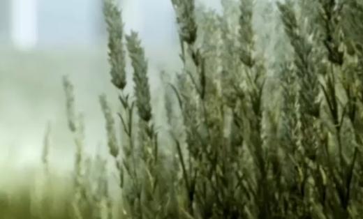 企业宣传片——瀚洋环保