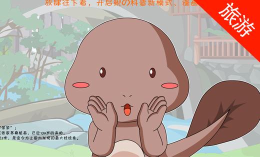 【旅游】景区宣传漫画—张家界大鲵