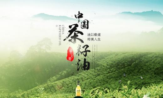 艾斯古朴菜籽油网站设计
