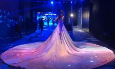 礼仪模特商演表演明星通告演出主持人配音员肩上芭蕾杂技小品相声