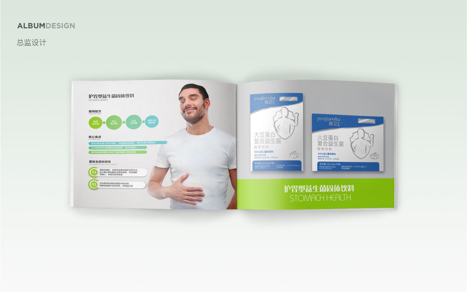 总监科技娱乐房产企业画册公司产品宣传册说明书品牌折页招商设计