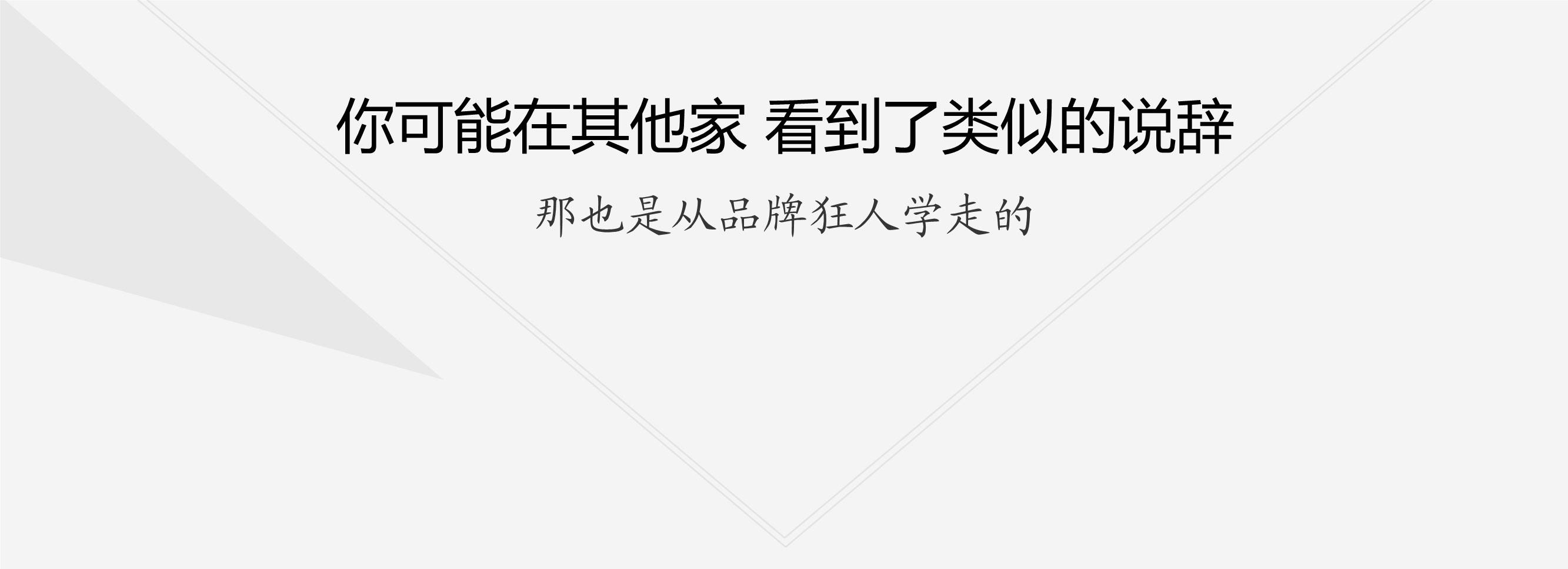 _品牌狂人 专业产品牌全案策划机构 定制定位企业形象宣传包装3