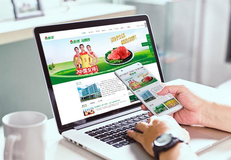 PC+手机网站建设/食品饮料行业网站建设/网站开发/网站制作