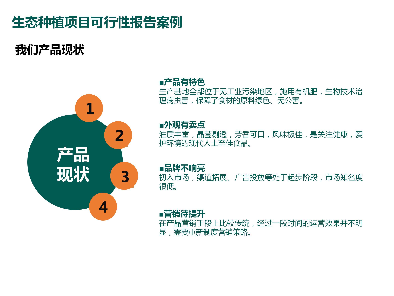 可行性报告商业计划研究创业投标企划案行业PPT撰写调研诊断书