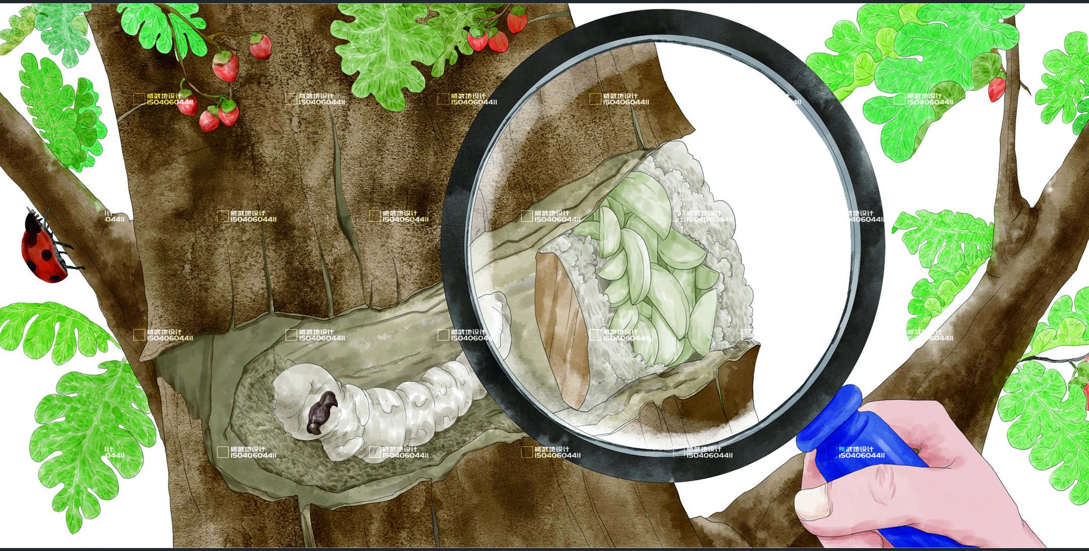 _新媒体插画-故事配图-童书绘本-视频 包装 服装插画文创设计8