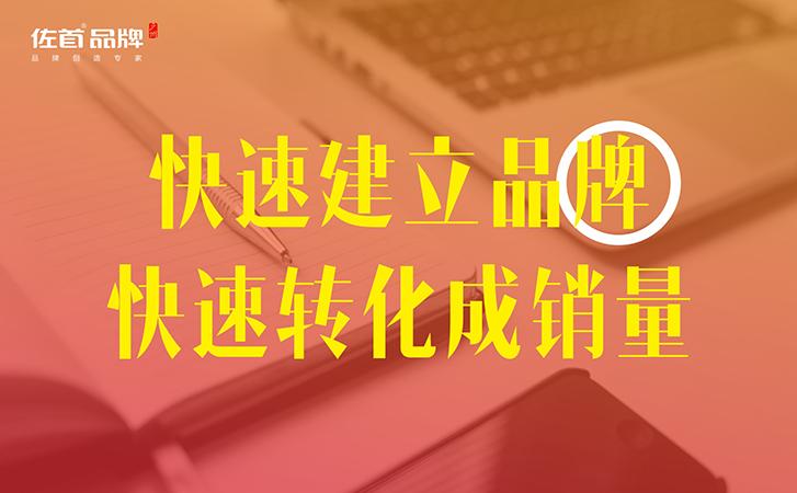 【佐首品牌】icon设计UI设计互联网平台企业LOGO标识