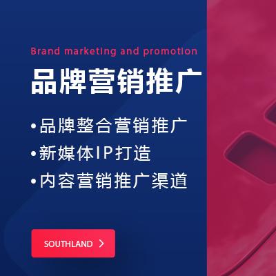 代写商业计划书融资报告路演BP可行性研究报告招商项目计划书