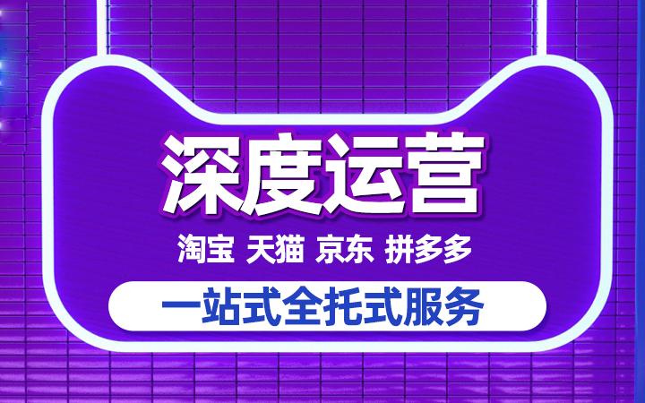 网店托管 淘宝天猫京东拼多多代运营  直通车推广直播