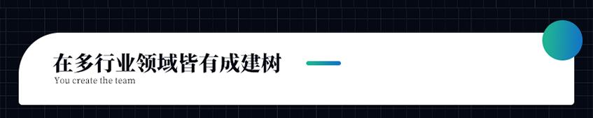 _安卓IOS物联网在线教育电商城直播医疗餐饮APP应用定制开发4
